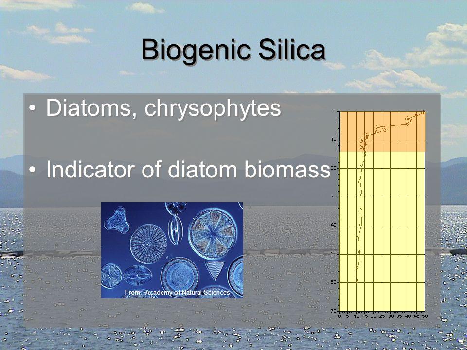 Biogenic Silica Diatoms, chrysophytes Indicator of diatom biomass