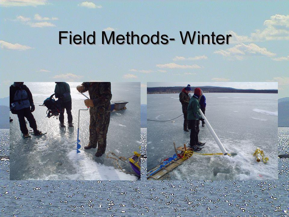 Field Methods- Winter