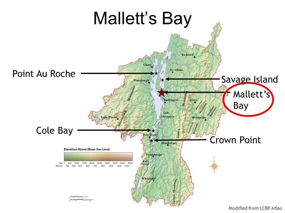 Mallett's Bay Point Au Roche Savage Island Mallett's Bay Cole Bay