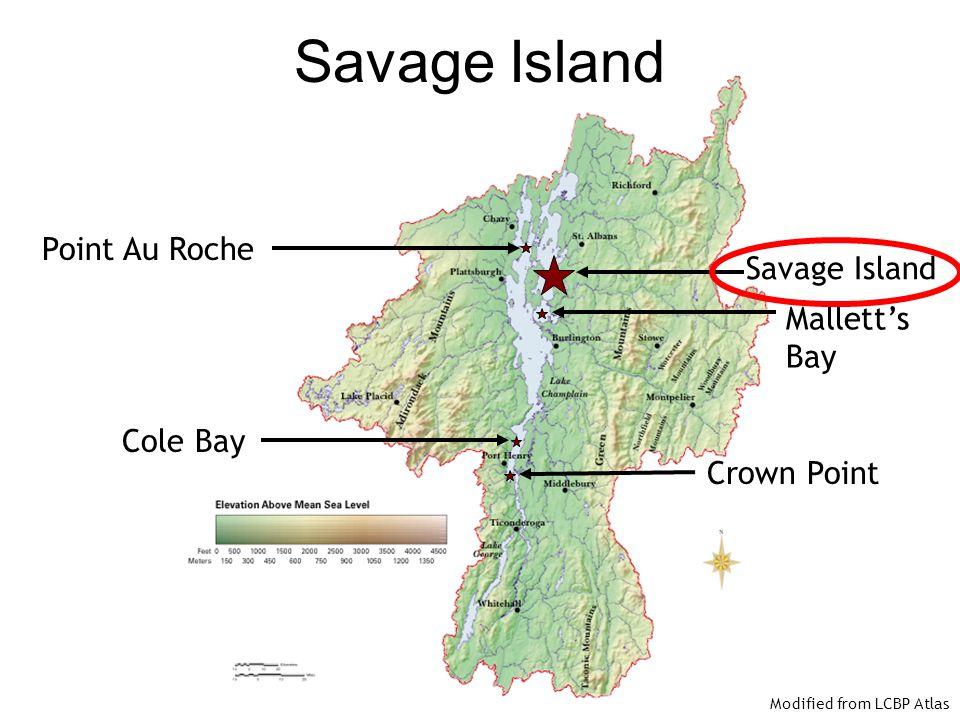 Savage Island Point Au Roche Savage Island Mallett's Bay Cole Bay