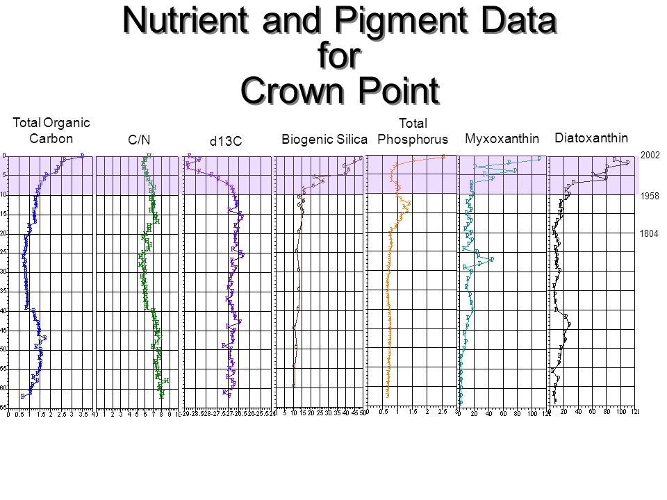 Nutrient and Pigment Data for Crown Point
