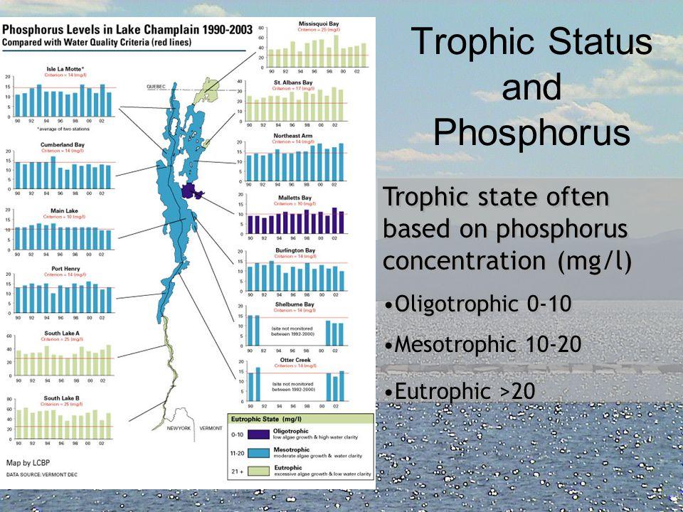 Trophic Status and Phosphorus
