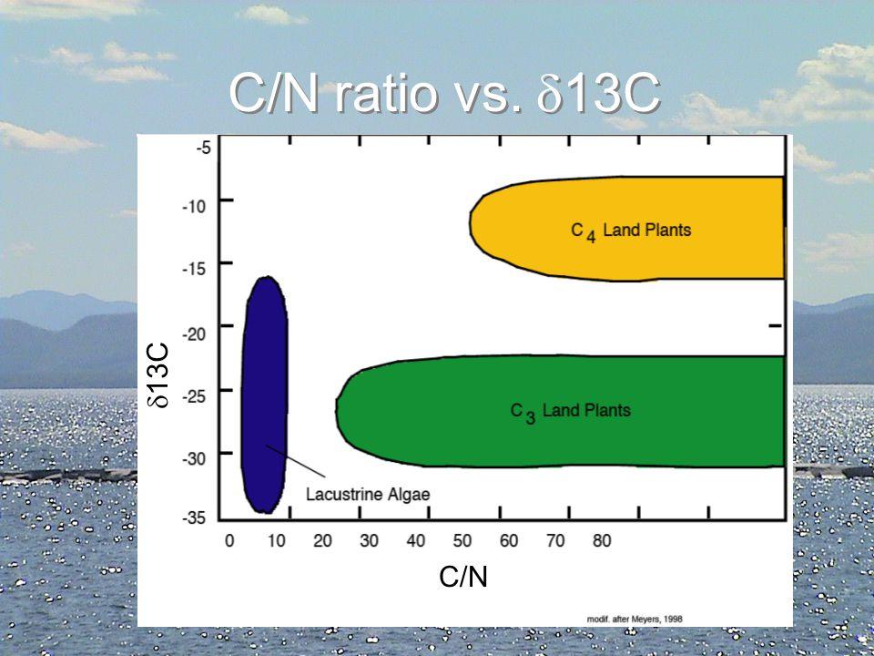 C/N ratio vs. 13C 13C C/N C/N