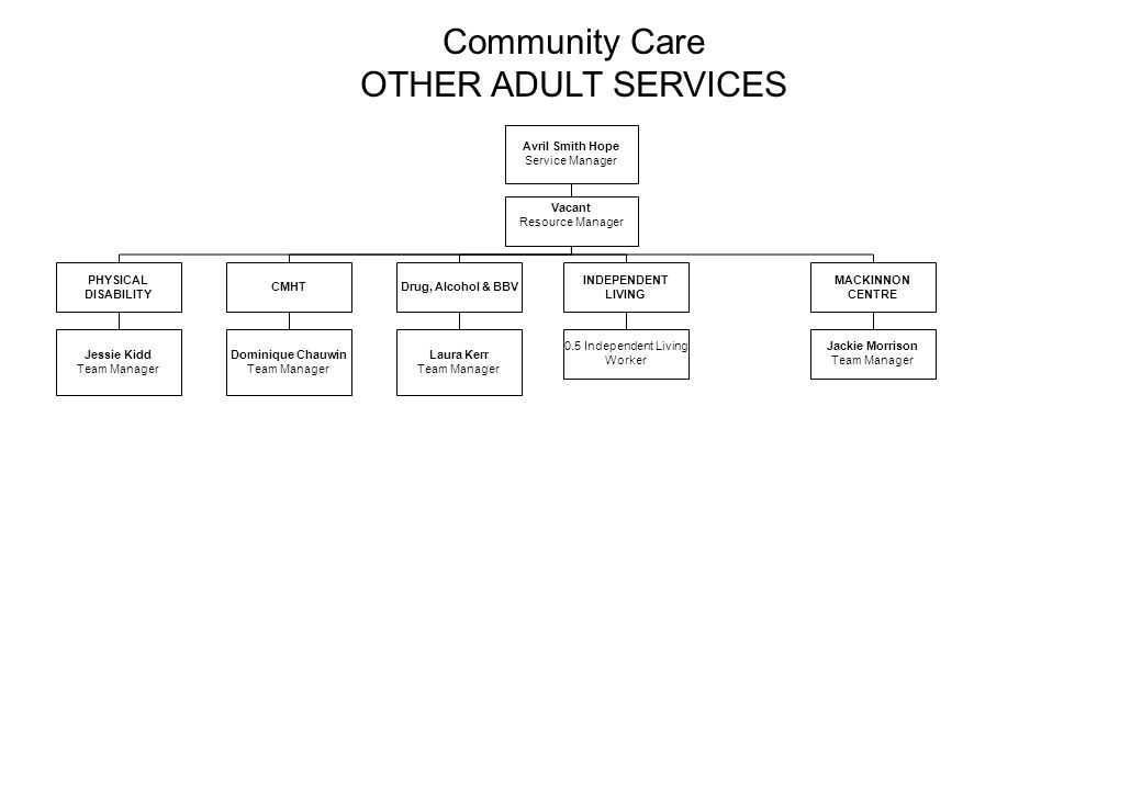 Community Care OTHER ADULT SERVICES