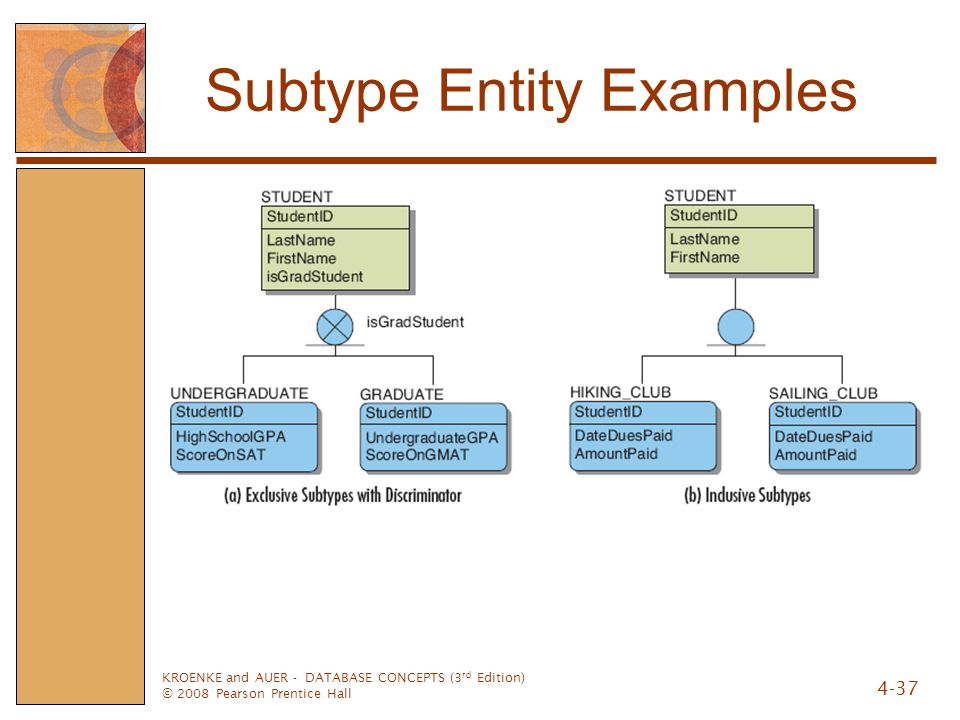 Subtype Entity Examples