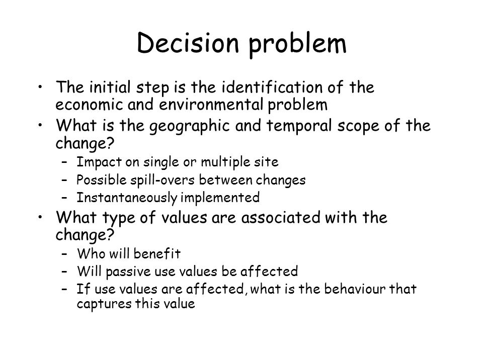 Decision problem The initial step is the identification of the economic and environmental problem.