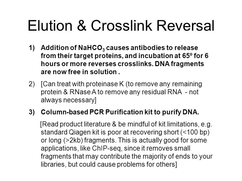 Elution & Crosslink Reversal