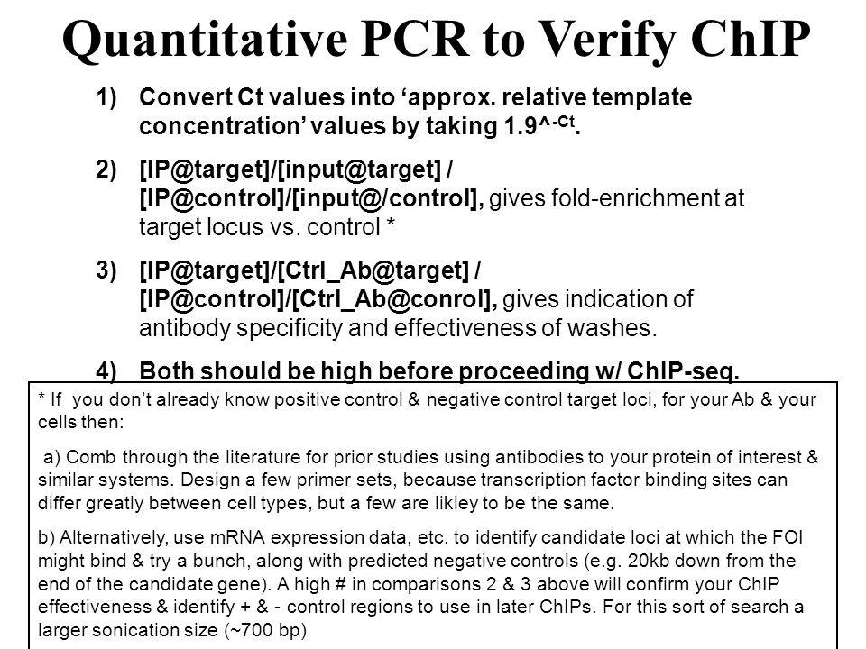 Quantitative PCR to Verify ChIP