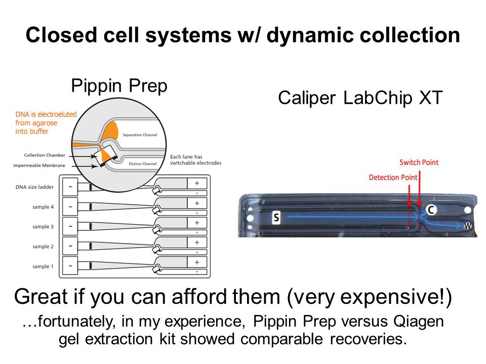 Closed cell systems w/ dynamic collection