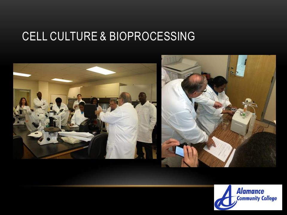 Cell culture & bioprocessing