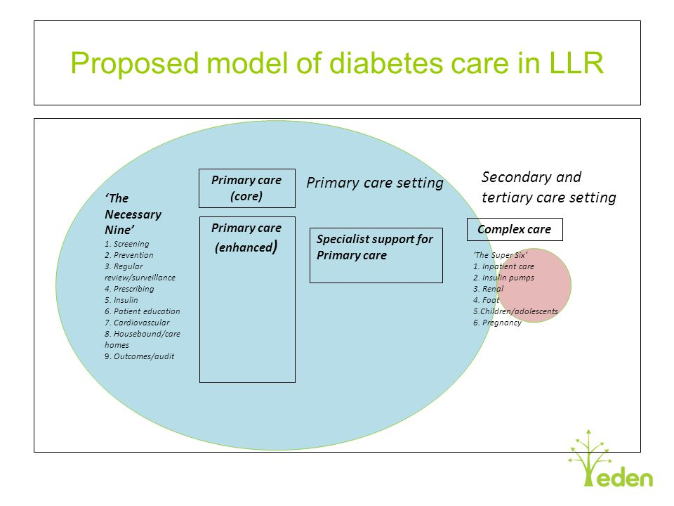 Proposed model of diabetes care in LLR