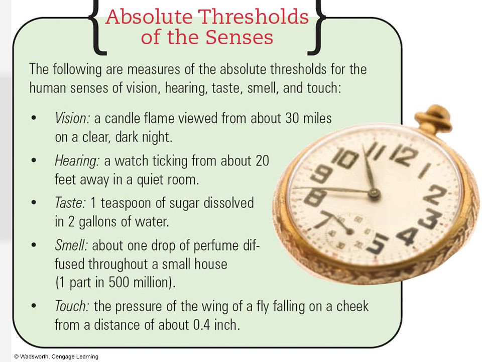 2. Absolute Threshold Weakest amount of a stimulus that can be distinguished from no stimulus at all.