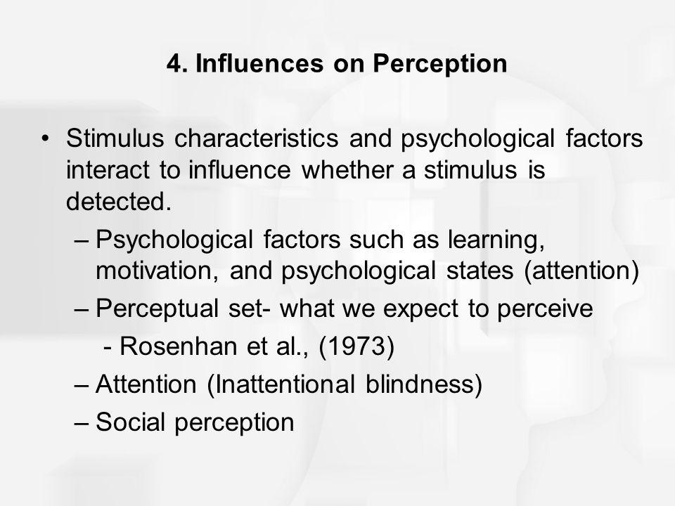 4. Influences on Perception