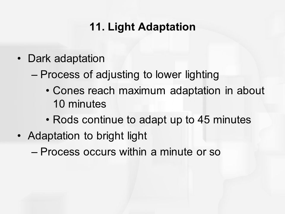 11. Light Adaptation Dark adaptation. Process of adjusting to lower lighting. Cones reach maximum adaptation in about 10 minutes.