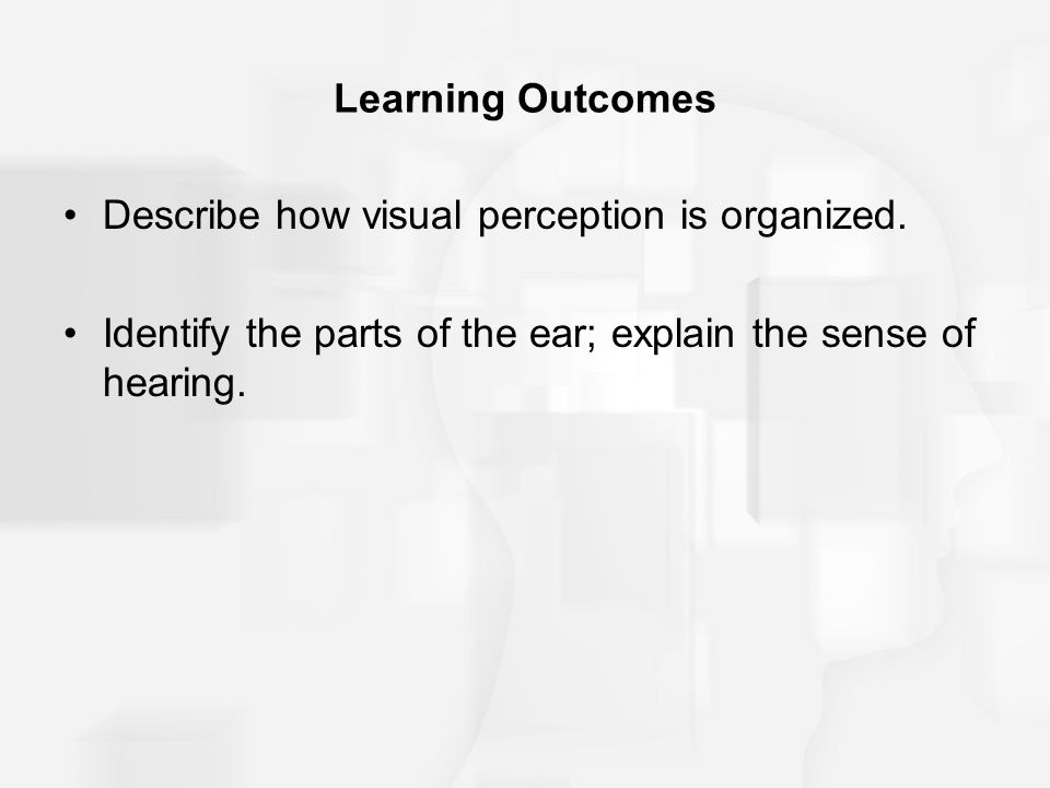 Learning Outcomes Describe how visual perception is organized.