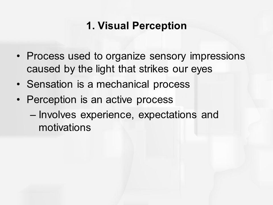 1. Visual Perception Process used to organize sensory impressions caused by the light that strikes our eyes.