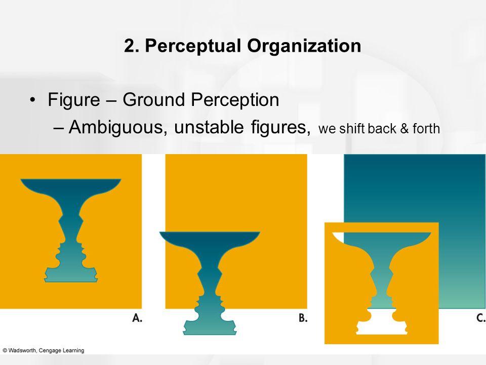 2. Perceptual Organization