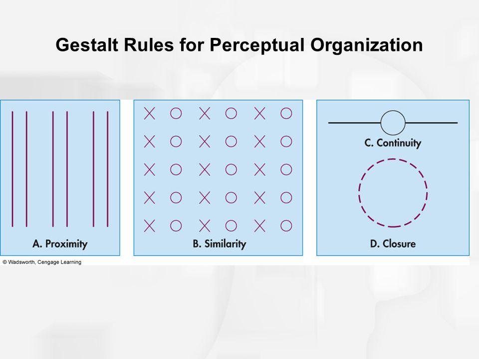 Gestalt Rules for Perceptual Organization