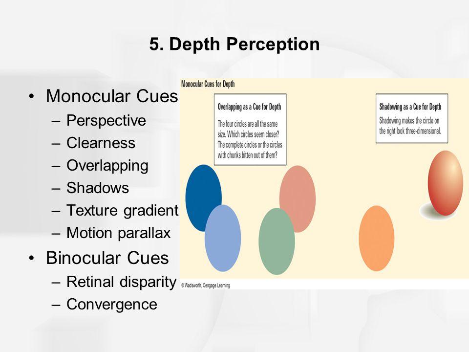 5. Depth Perception Monocular Cues Binocular Cues Perspective