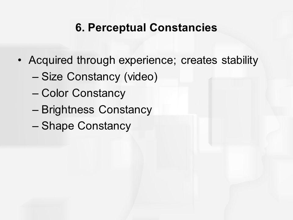 6. Perceptual Constancies