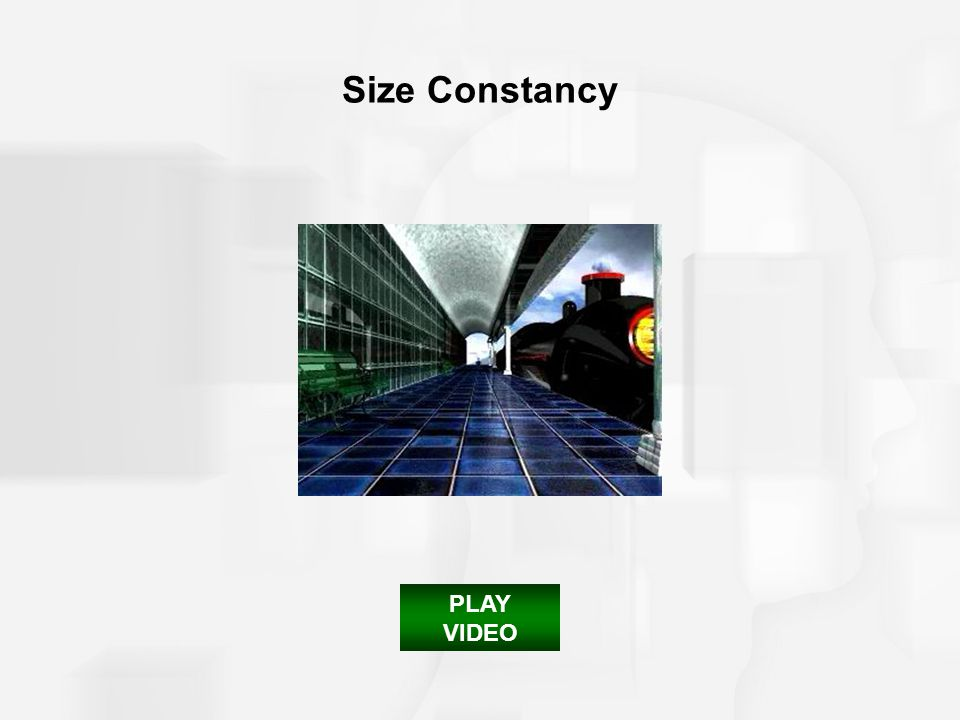 Size Constancy PLAY VIDEO