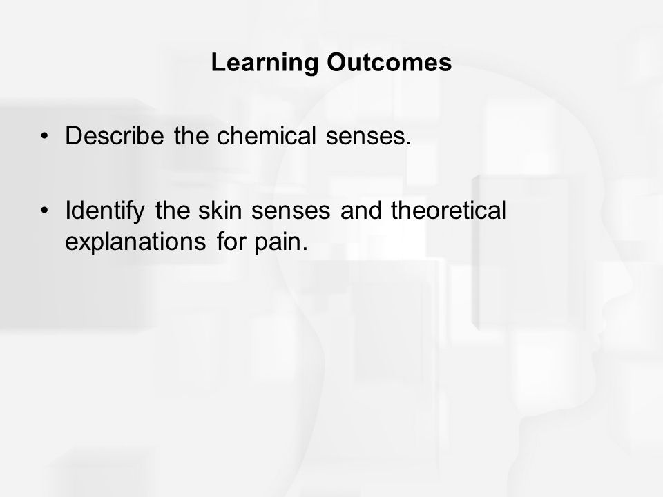Learning Outcomes Describe the chemical senses.