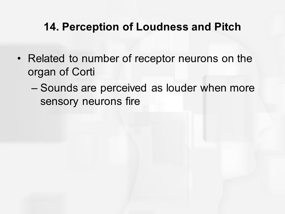 14. Perception of Loudness and Pitch