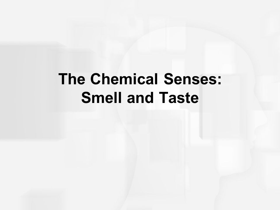 The Chemical Senses: Smell and Taste