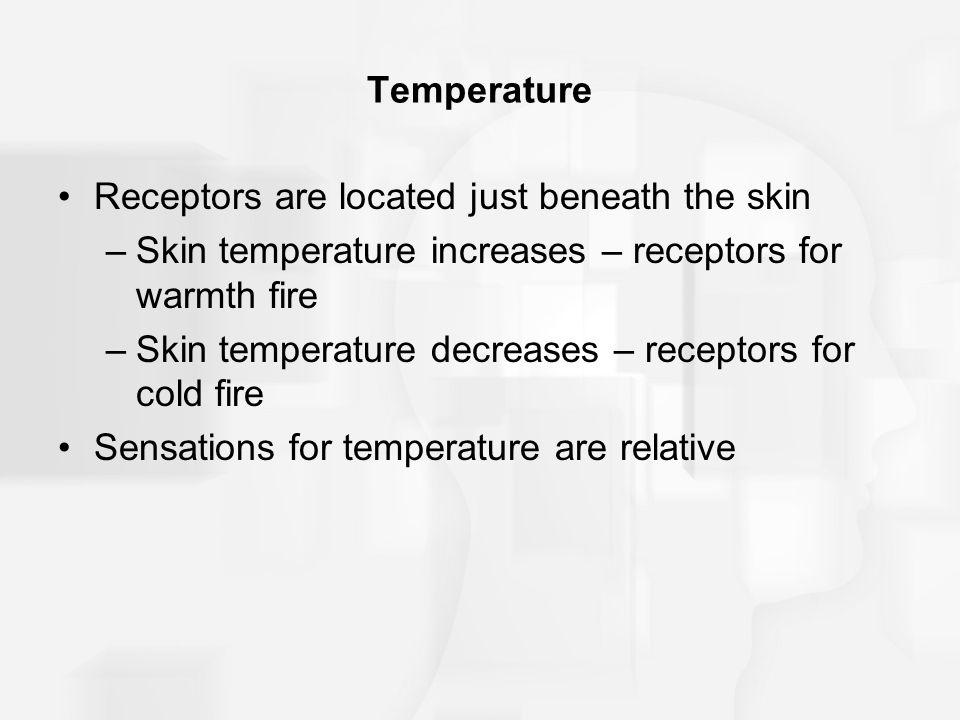 Temperature Receptors are located just beneath the skin. Skin temperature increases – receptors for warmth fire.