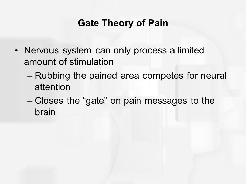 Gate Theory of Pain Nervous system can only process a limited amount of stimulation. Rubbing the pained area competes for neural attention.