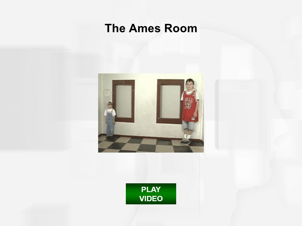 The Ames Room PLAY VIDEO