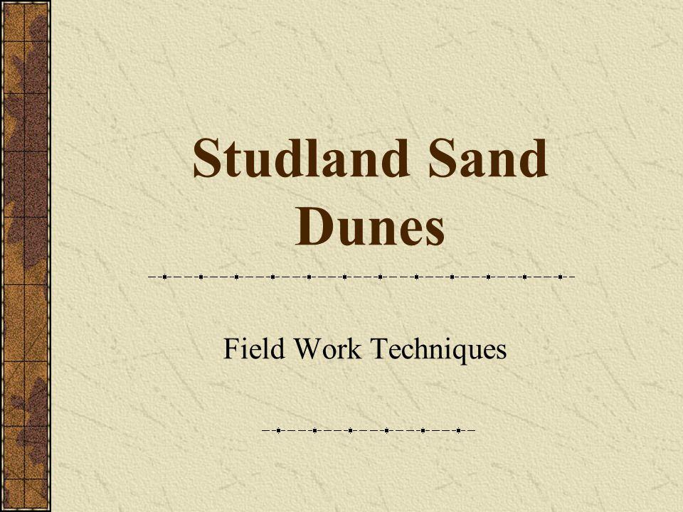 Studland Sand Dunes Field Work Techniques