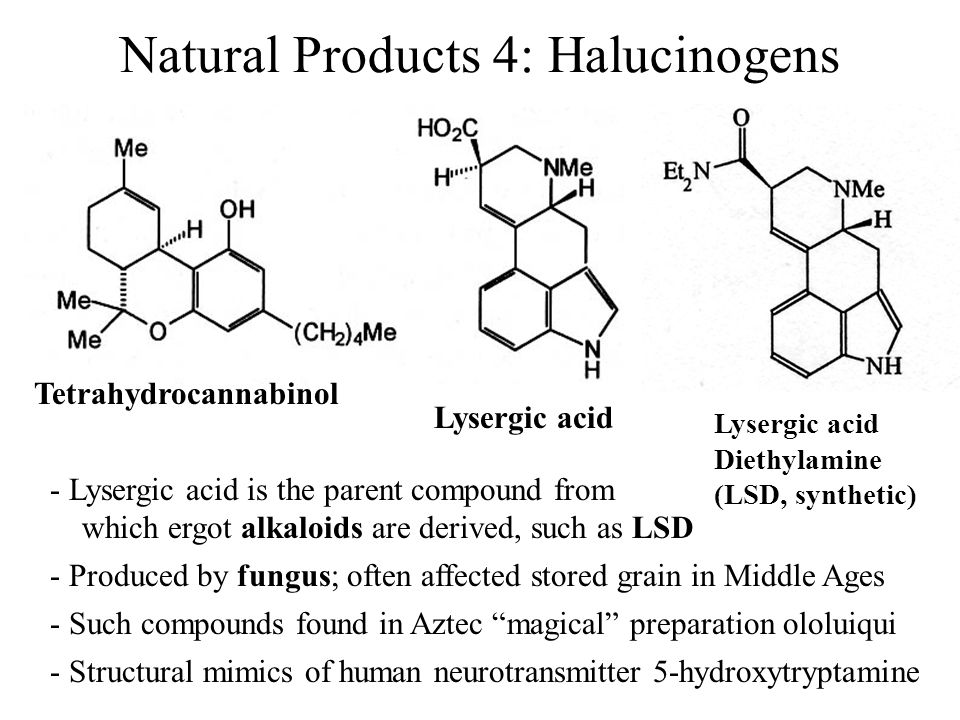 Natural Products 4: Halucinogens