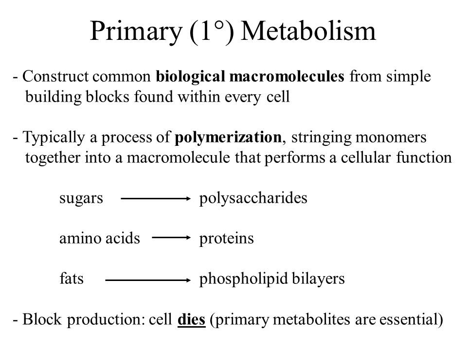 Primary (1°) Metabolism