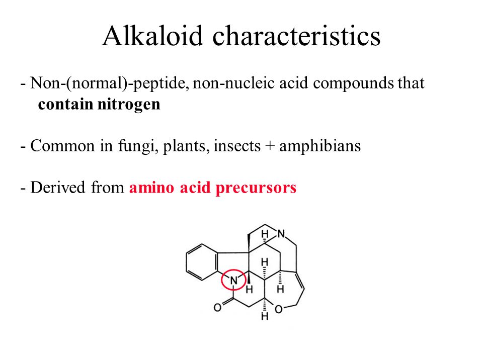 Alkaloid characteristics