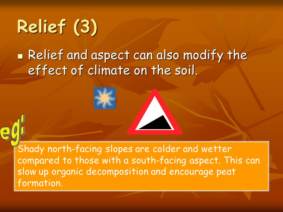 Relief (3) Relief and aspect can also modify the effect of climate on the soil.