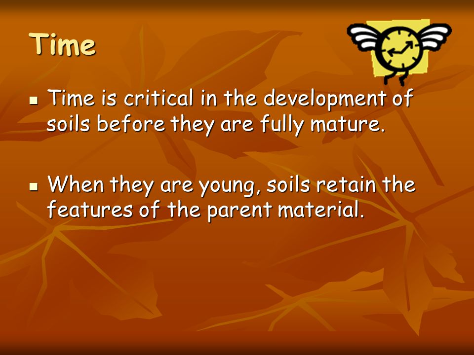 Time Time is critical in the development of soils before they are fully mature.