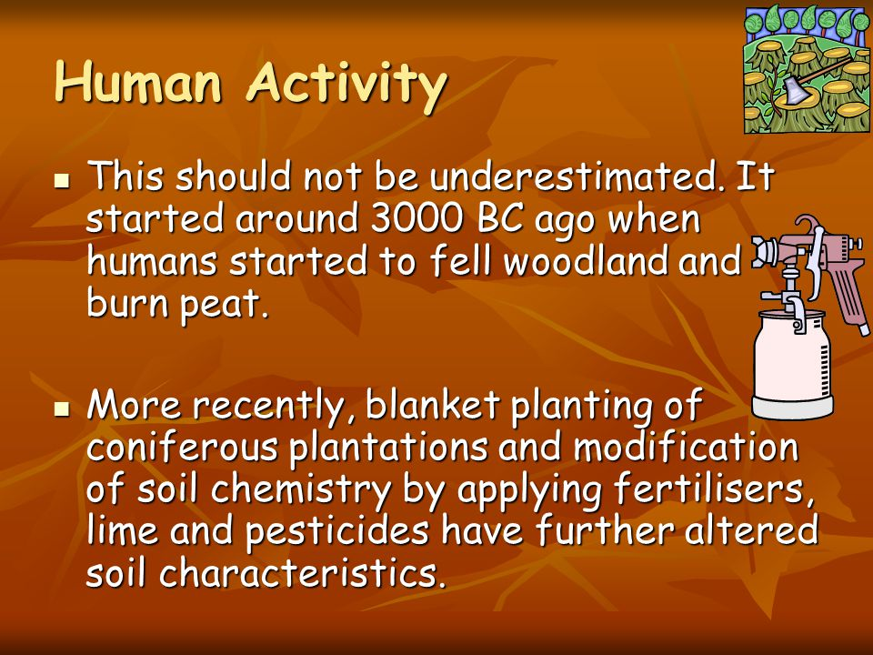 Human Activity This should not be underestimated. It started around 3000 BC ago when humans started to fell woodland and burn peat.