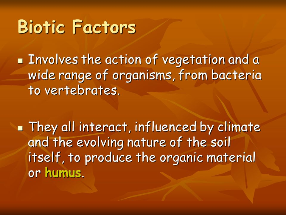 Biotic Factors Involves the action of vegetation and a wide range of organisms, from bacteria to vertebrates.