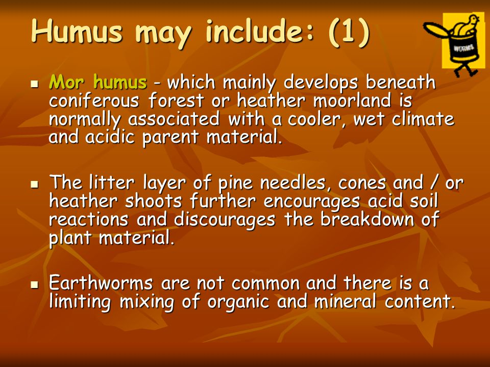 Humus may include: (1)
