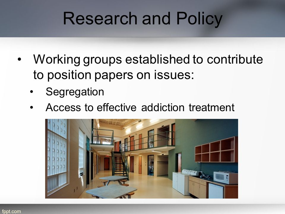 Research and Policy Working groups established to contribute to position papers on issues: Segregation.