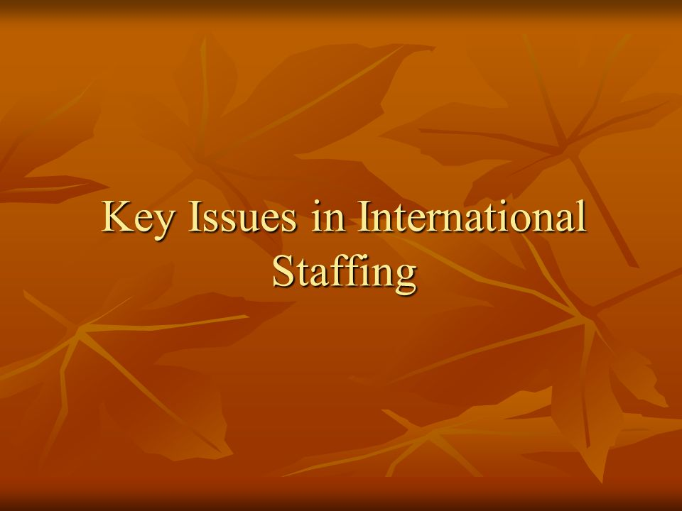 Key Issues in International Staffing