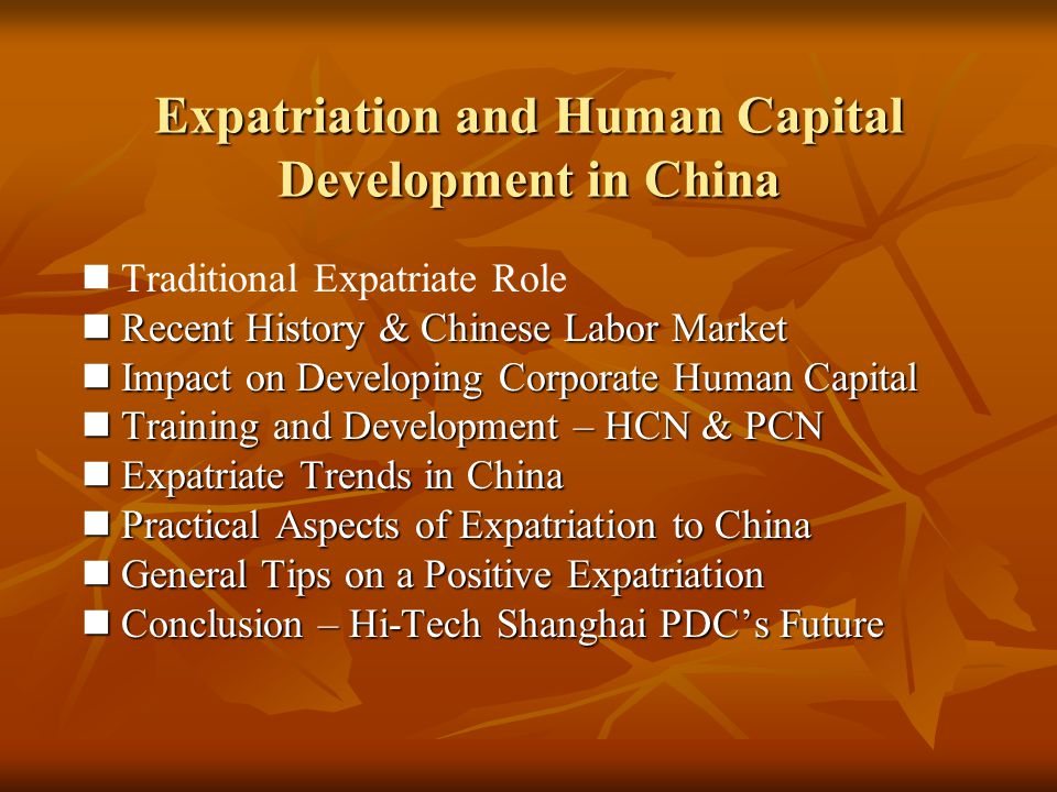 Expatriation and Human Capital Development in China
