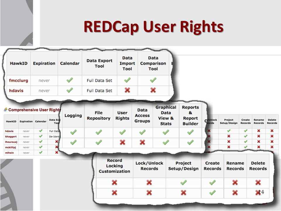 REDCap User Rights