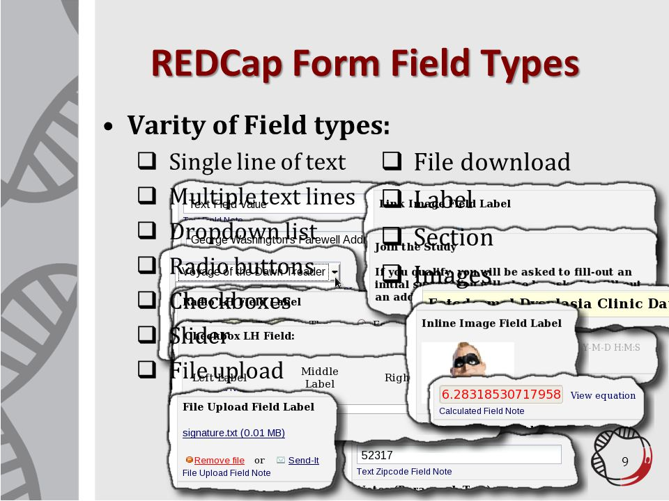 REDCap Form Field Types