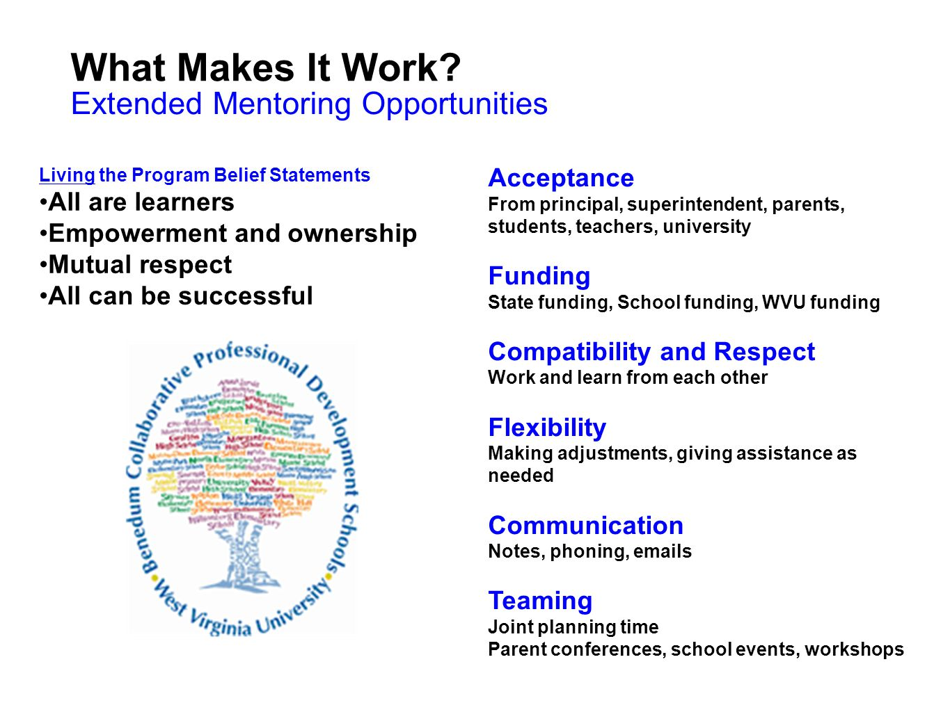 What Makes It Work Extended Mentoring Opportunities Acceptance