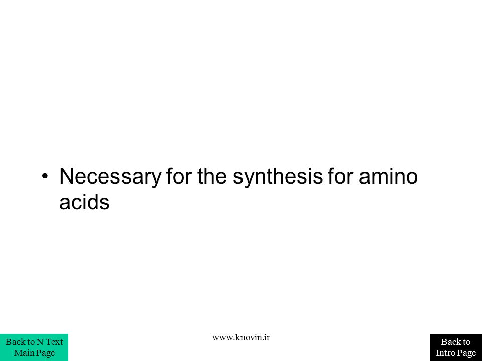 Necessary for the synthesis for amino acids