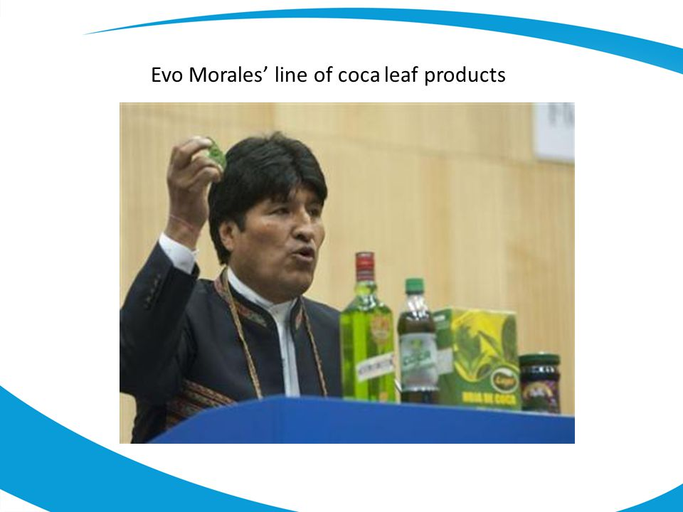 Evo Morales' line of coca leaf products
