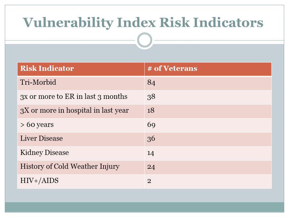 Vulnerability Index Risk Indicators