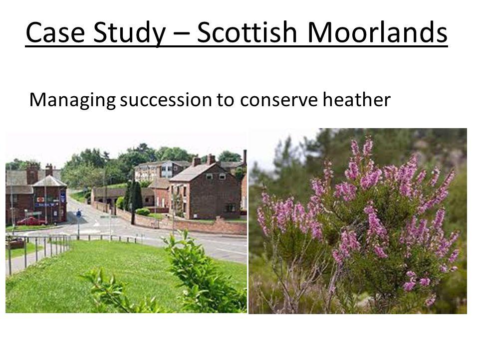 Case Study – Scottish Moorlands